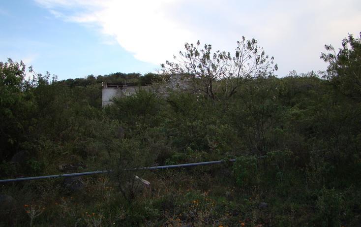Foto de terreno habitacional en venta en  , jaral del progreso, jaral del progreso, guanajuato, 448322 No. 04