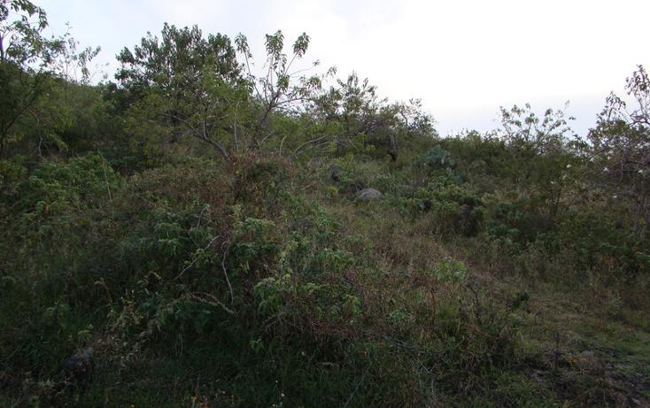Foto de terreno habitacional en venta en  , jaral del progreso, jaral del progreso, guanajuato, 448322 No. 05
