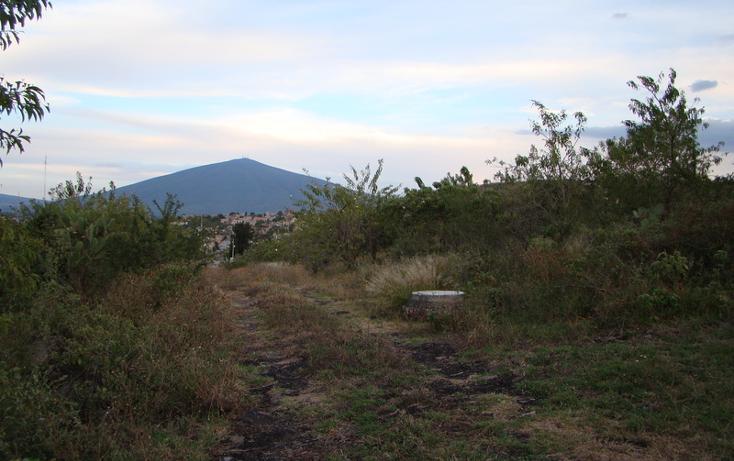 Foto de terreno habitacional en venta en  , jaral del progreso, jaral del progreso, guanajuato, 448322 No. 07