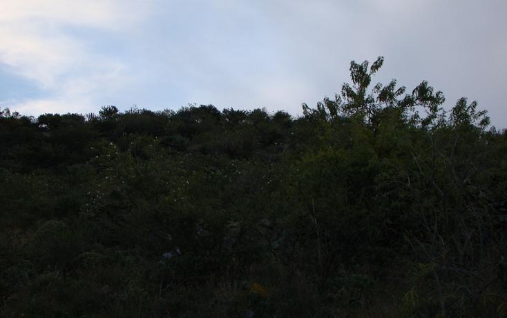 Foto de terreno habitacional en venta en  , jaral del progreso, jaral del progreso, guanajuato, 448322 No. 11