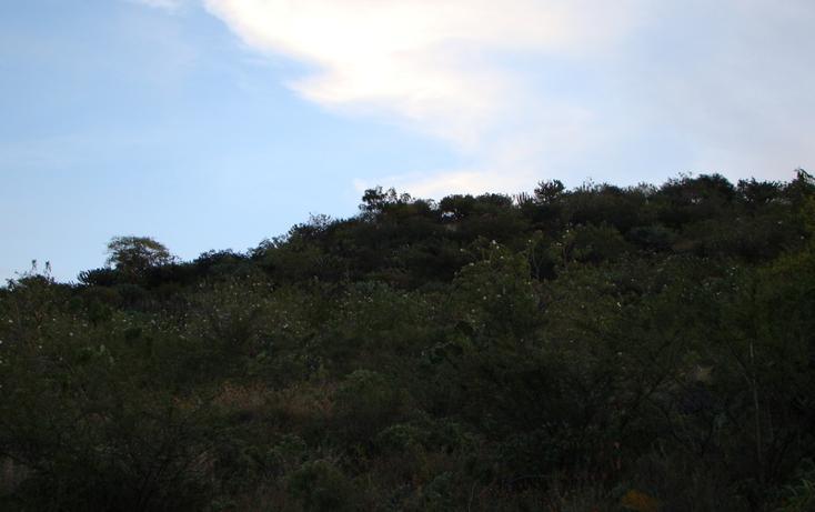 Foto de terreno habitacional en venta en  , jaral del progreso, jaral del progreso, guanajuato, 448322 No. 12