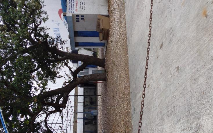 Foto de terreno comercial en renta en  , jard?n 20 de noviembre, ciudad madero, tamaulipas, 1619466 No. 02