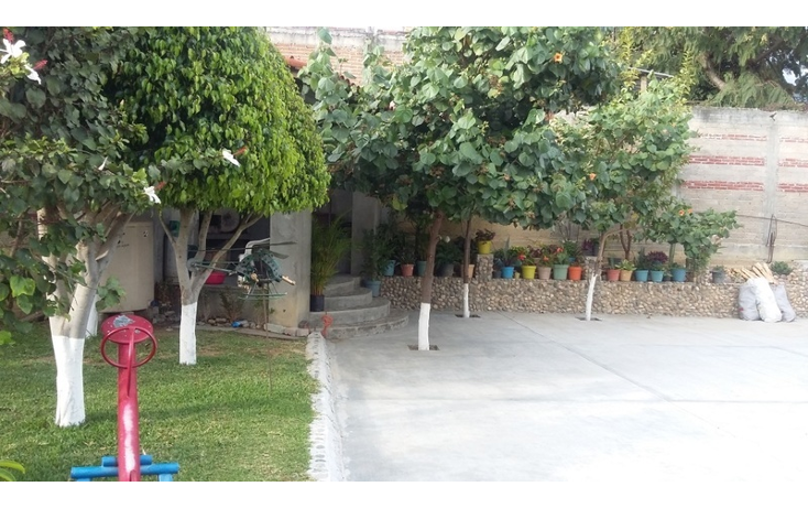 Foto de terreno habitacional en venta en  , jard?n, oaxaca de ju?rez, oaxaca, 1466947 No. 05