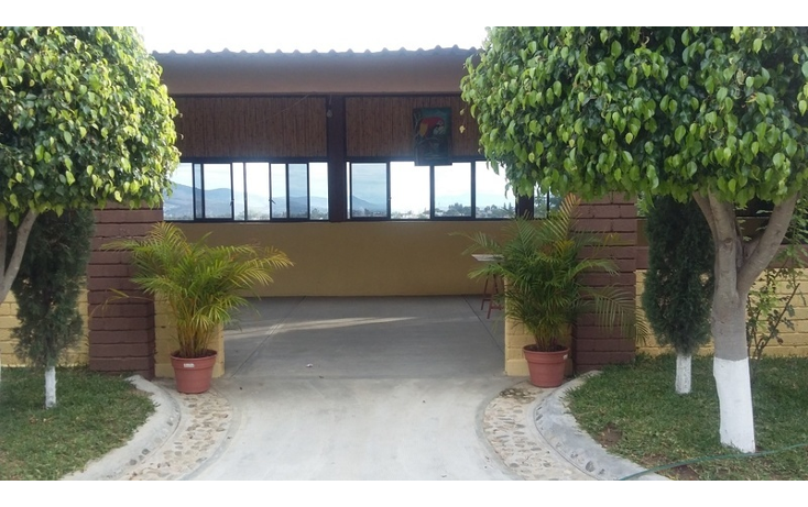 Foto de terreno habitacional en venta en  , jard?n, oaxaca de ju?rez, oaxaca, 1466947 No. 06