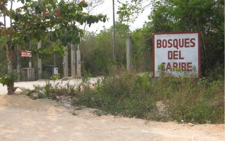 Foto de terreno habitacional en venta en  , jardines cancún, benito juárez, quintana roo, 1356779 No. 05