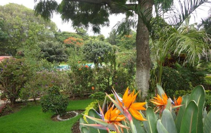 Foto de casa en renta en  -, jardines de delicias, cuernavaca, morelos, 1726546 No. 07