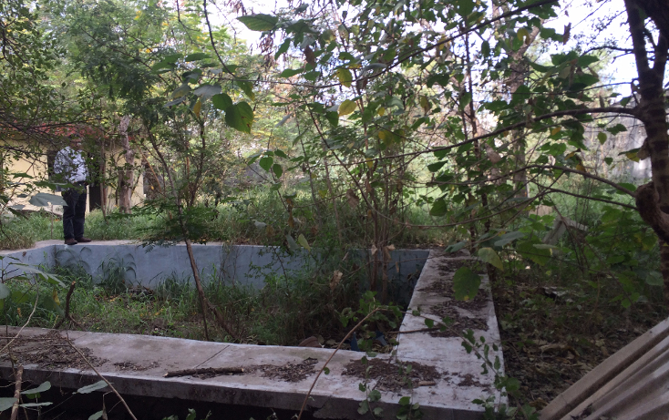 Foto de terreno habitacional en venta en  , jardines de la silla, ju?rez, nuevo le?n, 1554220 No. 12