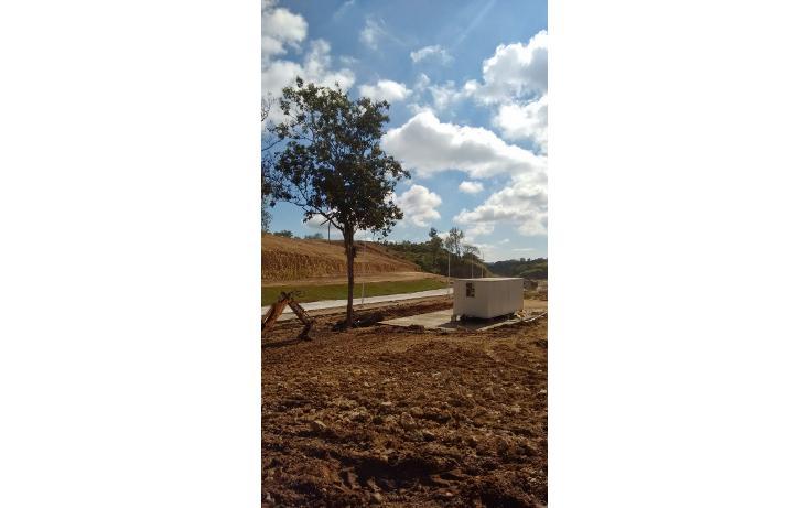 Foto de terreno habitacional en venta en  , jardines de las ánimas, xalapa, veracruz de ignacio de la llave, 1069419 No. 02