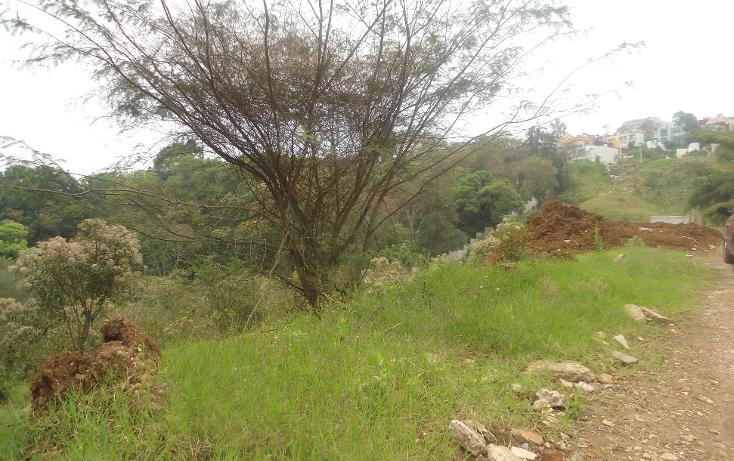 Foto de terreno habitacional en venta en  , jardines de santa rosa, xalapa, veracruz de ignacio de la llave, 1814386 No. 02