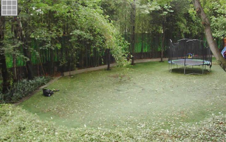 Foto de departamento en renta en, jardines del pedregal, álvaro obregón, df, 1658524 no 03