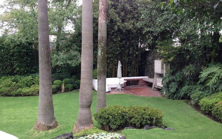 Foto de casa en venta en  , jardines del pedregal, álvaro obregón, distrito federal, 1261833 No. 03