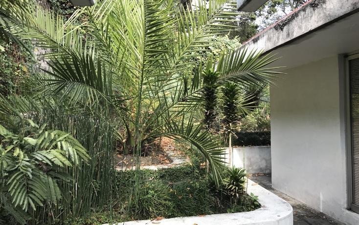 Foto de casa en renta en  , jardines del pedregal, álvaro obregón, distrito federal, 2831898 No. 07
