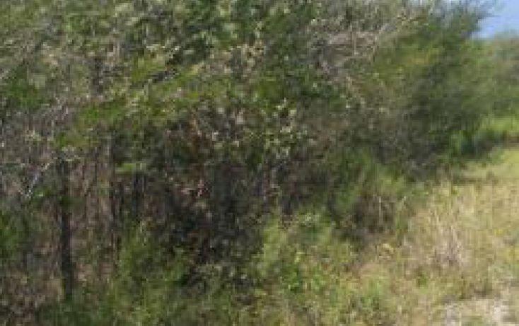 Foto de terreno habitacional en venta en, jáuregui, allende, nuevo león, 1834938 no 03