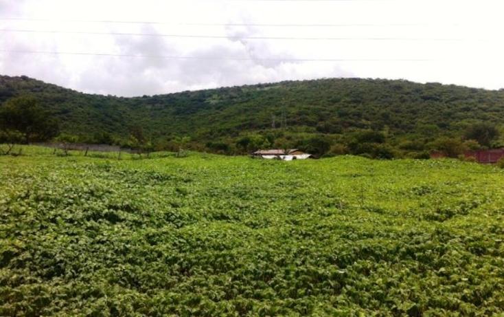 Foto de terreno habitacional en venta en  , jazmín yautepec i y ii, yautepec, morelos, 1034755 No. 11