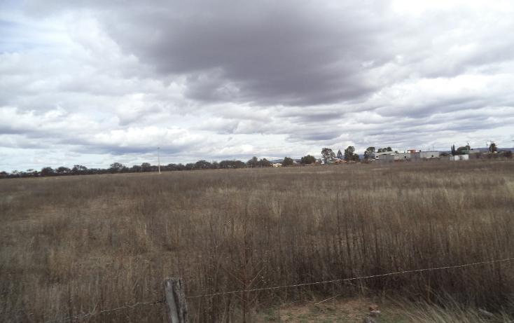 Foto de terreno habitacional en venta en  , jerez centro, jerez, zacatecas, 1254299 No. 09