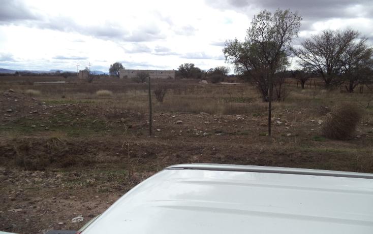 Foto de terreno habitacional en venta en  , jerez centro, jerez, zacatecas, 1254299 No. 11