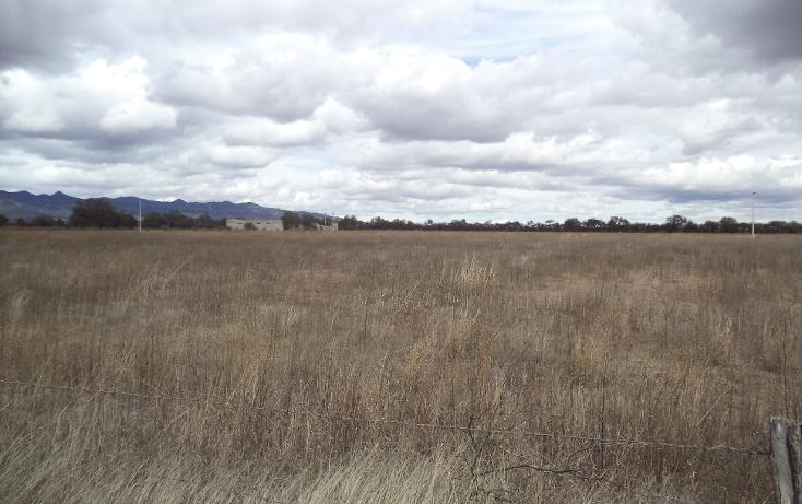 Foto de terreno habitacional en venta en  , jerez centro, jerez, zacatecas, 1254299 No. 17