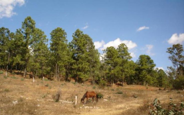 Foto de terreno habitacional en venta en, jesús del monte, morelia, michoacán de ocampo, 1476521 no 03