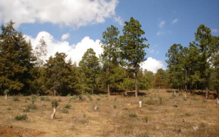 Foto de terreno habitacional en venta en  , jesús del monte, morelia, michoacán de ocampo, 1476521 No. 05