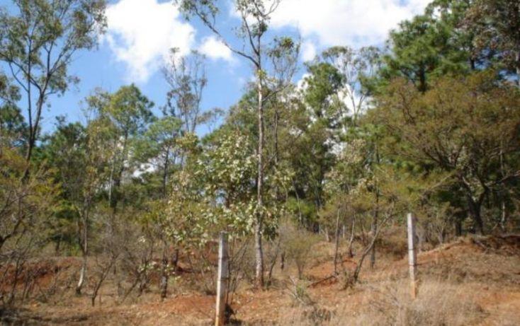 Foto de terreno habitacional en venta en, jesús del monte, morelia, michoacán de ocampo, 1476521 no 06
