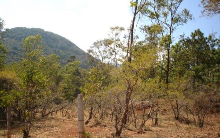 Foto de terreno habitacional en venta en  , jesús del monte, morelia, michoacán de ocampo, 1476521 No. 07