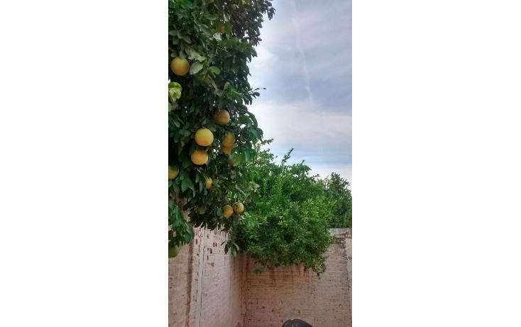 Foto de casa en venta en  , las malvinas, ahome, sinaloa, 1709938 No. 14
