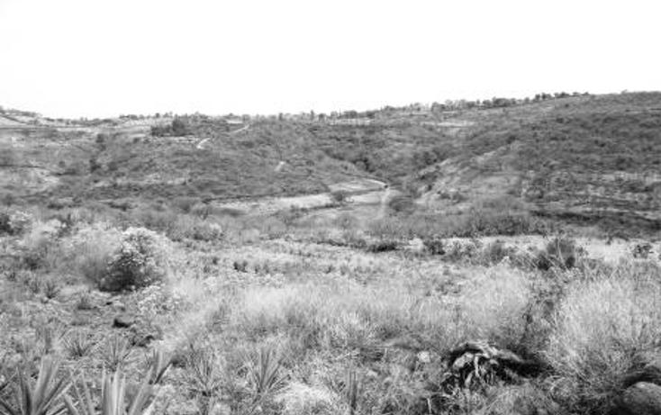 Foto de terreno habitacional en venta en  , jesús maria, jesús maría, jalisco, 1275381 No. 15