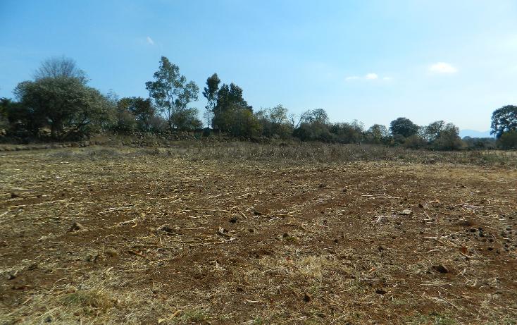 Foto de terreno habitacional en venta en  , jilotepec de molina enríquez, jilotepec, méxico, 1396067 No. 06