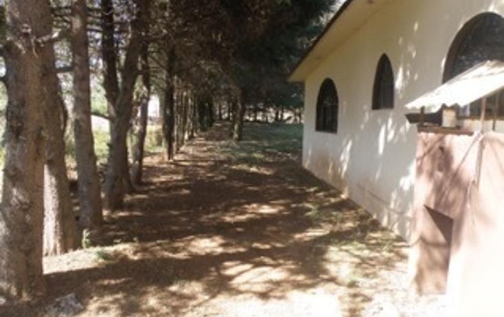 Foto de rancho en venta en  , jilotepec de molina enríquez, jilotepec, méxico, 2033960 No. 06