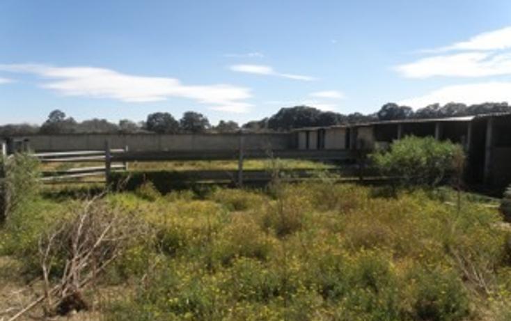 Foto de rancho en venta en  , jilotepec de molina enríquez, jilotepec, méxico, 2033960 No. 09