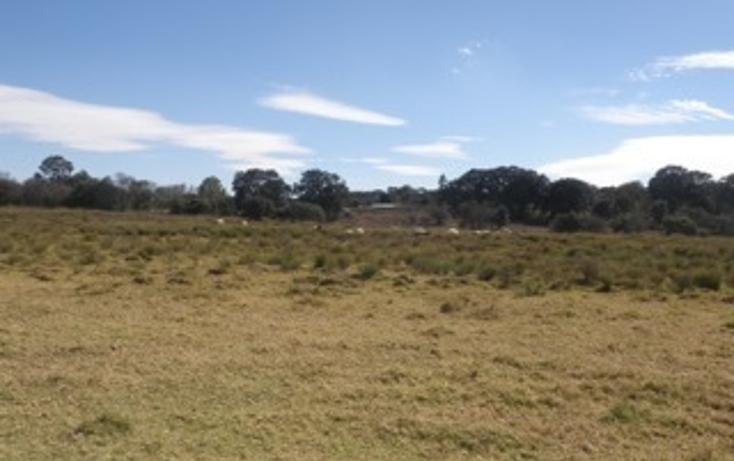 Foto de rancho en venta en  , jilotepec de molina enríquez, jilotepec, méxico, 2033960 No. 10