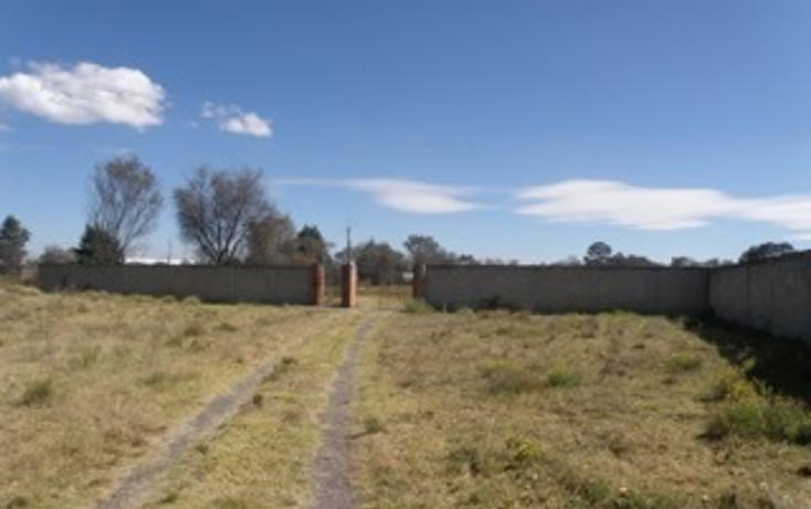 Foto de rancho en venta en  , jilotepec de molina enríquez, jilotepec, méxico, 2033960 No. 11