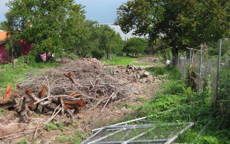 Foto de terreno habitacional en venta en la puerta , jocotepec centro, jocotepec, jalisco, 2045655 No. 04