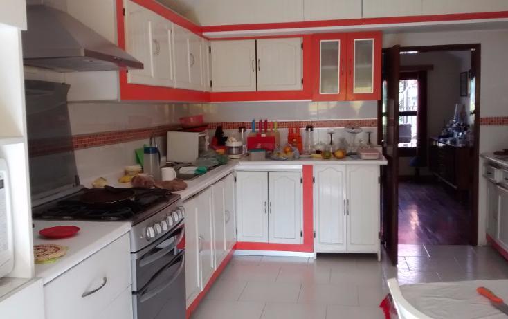 Foto de casa en venta en  , josé cardel, xalapa, veracruz de ignacio de la llave, 1264579 No. 05