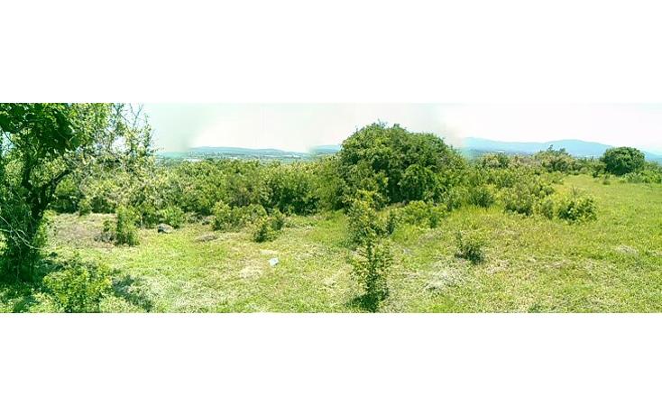 Foto de terreno habitacional en venta en  , jos? ortiz (san mart?n), yautepec, morelos, 1394171 No. 01