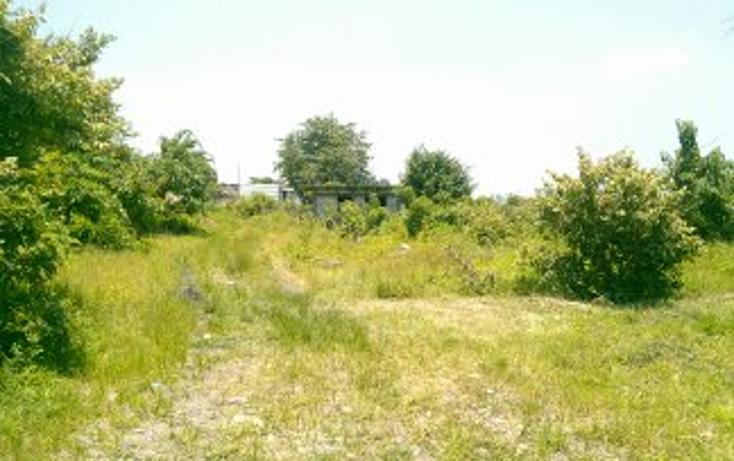 Foto de terreno habitacional en venta en  , jos? ortiz (san mart?n), yautepec, morelos, 1394171 No. 03