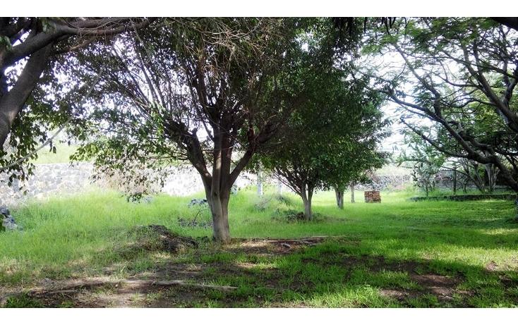 Foto de terreno habitacional en venta en  , jos? ortiz (san mart?n), yautepec, morelos, 1638152 No. 01
