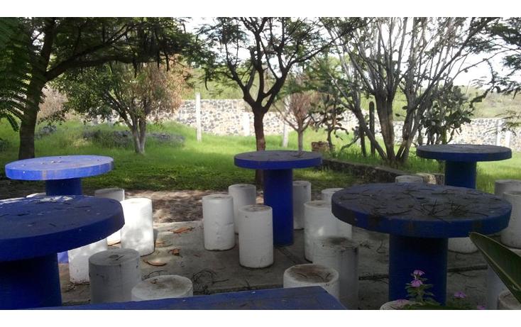 Foto de terreno habitacional en venta en  , jos? ortiz (san mart?n), yautepec, morelos, 1638152 No. 05