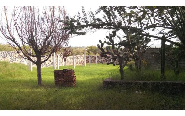 Foto de terreno habitacional en venta en  , jos? ortiz (san mart?n), yautepec, morelos, 1638152 No. 06