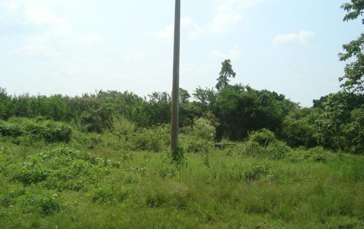 Foto de terreno habitacional en venta en  , josé ortiz (san martín), yautepec, morelos, 2044079 No. 02
