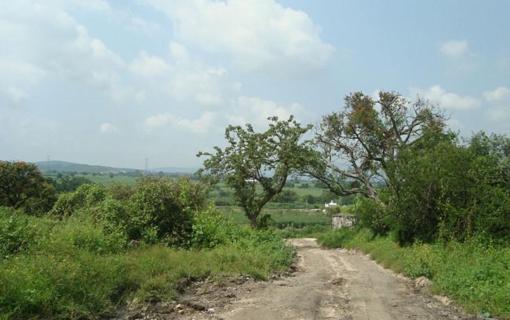 Foto de terreno habitacional en venta en  , josé ortiz (san martín), yautepec, morelos, 2044079 No. 03