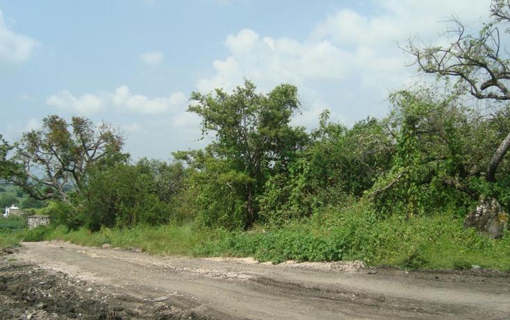 Foto de terreno habitacional en venta en  , josé ortiz (san martín), yautepec, morelos, 2044079 No. 04