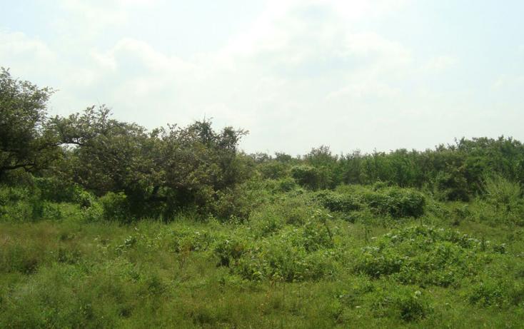 Foto de terreno habitacional en venta en  , josé ortiz (san martín), yautepec, morelos, 2044079 No. 05