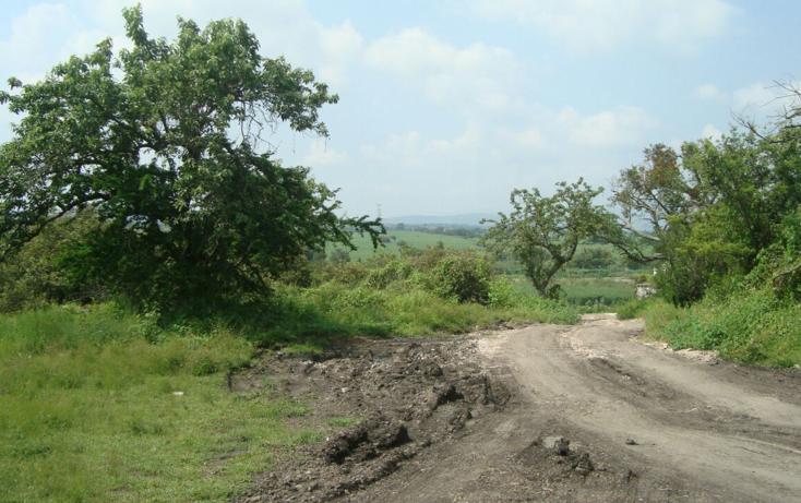 Foto de terreno habitacional en venta en  , josé ortiz (san martín), yautepec, morelos, 2044079 No. 06