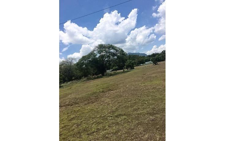 Foto de terreno habitacional en venta en  , juan crispín, tuxtla gutiérrez, chiapas, 1292569 No. 01