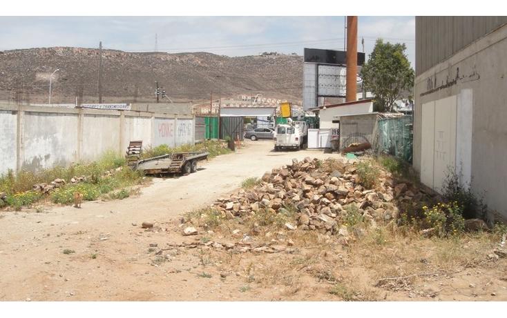 Foto de terreno comercial en venta en  , juan diego, ensenada, baja california, 1202649 No. 05