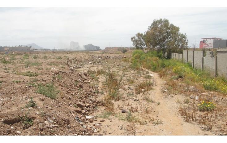 Foto de terreno comercial en venta en  , juan diego, ensenada, baja california, 1202649 No. 06