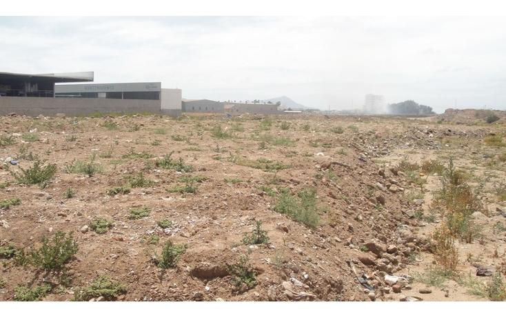 Foto de terreno comercial en venta en  , juan diego, ensenada, baja california, 1202649 No. 08
