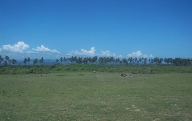 Foto de terreno habitacional en venta en  , juan n alvarez, copala, guerrero, 1097851 No. 06
