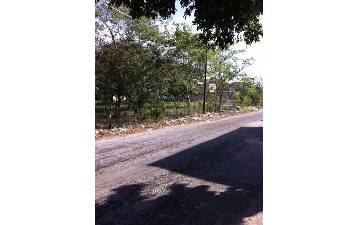 Foto de terreno habitacional en venta en  , juan pablo ii, mérida, yucatán, 1611732 No. 05